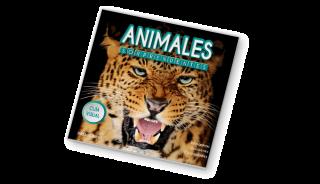 animales_tapa