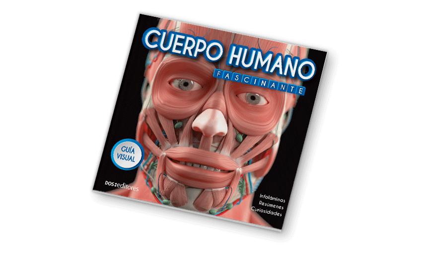 Cuerpo humano fascinante